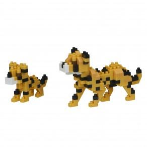 Cheetahs - Wild Life