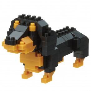 Dachshund - Dog Breed